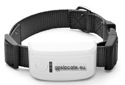Picture of Pet GPS Tracker